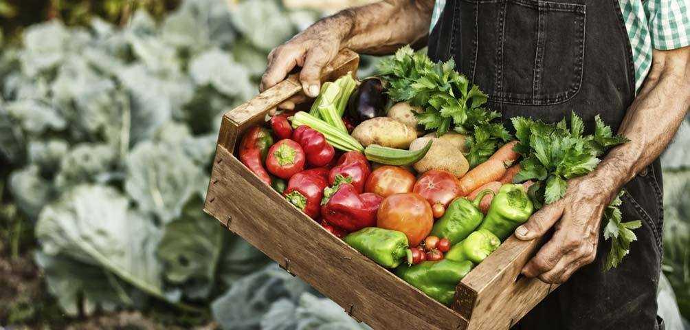 Productos de calidad - Gastroidea.com (Fuente: Slowfood.es)