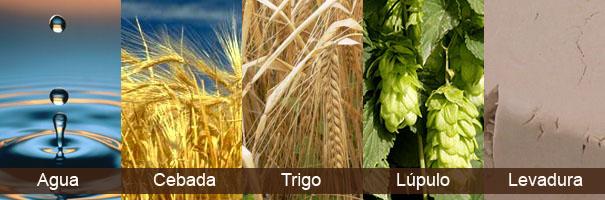 Las cervezas del mundo. Ingredientes de la cerveza - Gastroidea.com