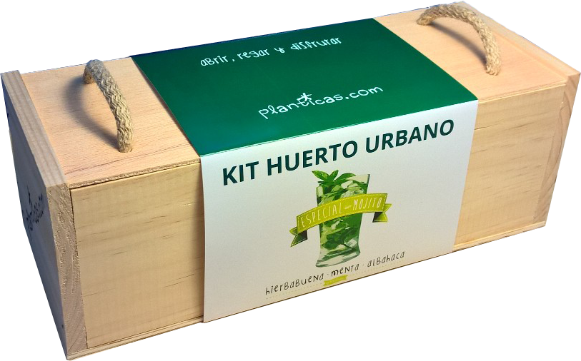 Kit huerto urbano part 1 for Kit de cultivo de interior